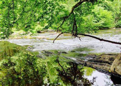 Stromend water door de ourthe in de Ardennen