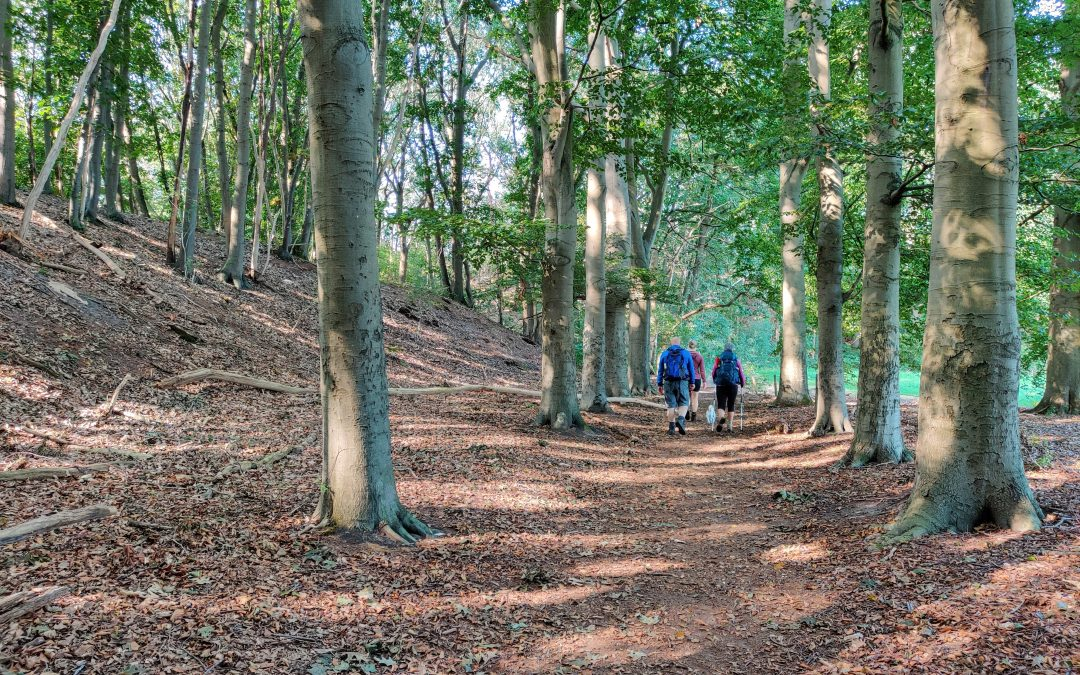 Walk2gather: Samen wandelen in de natuur